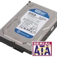 320GB SATA Westren Digital WD3200AAJS